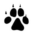 dog footprint vector image vector image