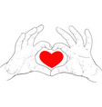 hands showing heart vector image