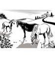 horses grazing in a meadow vector image vector image
