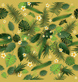 pattern exotic background vector image vector image