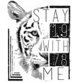 tiger face with typo for tee print vector image