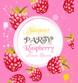 watercolor raspberry summer card background vector image vector image