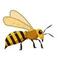 Bee icon cartoon style vector image vector image
