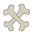 bones crossed drawing isolated icon vector image