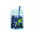 detox cocktail with fresh blueberry and green vector image vector image