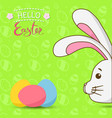 easter bunny with colorful eggs easter rabbit vector image vector image
