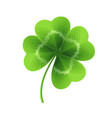 four leaf clover isolated on white vector image vector image