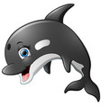 happy killer whale cartoon vector image vector image