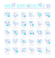 set blue line icons meat and poultry vector image