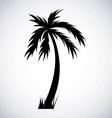 Tree palm design