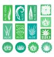 Aloe vera design elements Stickers vector image vector image