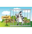 Cartoon Zoo Lemur vector image vector image