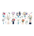 collection wild and garden blooming flowers in vector image vector image