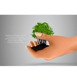 handful of ground with green sprout in her hands vector image vector image