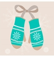 pair of red mittens Isolate on white vector image