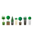 set of potted plants vector image vector image