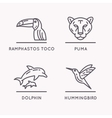 animals south america vector image