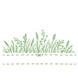 background with wild herbs vector image vector image