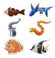 Cute fish collection set isolated on white backgro vector image vector image