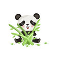 cute panda sitting on floor and holding green vector image vector image