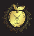 forbidden fruit apple from the tree of knowledge vector image vector image