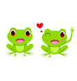 front view cute female red eye tree frog vector image vector image