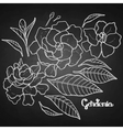 Graphic gardenia set vector image