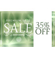 green premium sale banner or voucher design vector image vector image