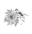 hand drawn goldfinch sitting on peony branch vector image vector image