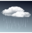 Raincloud and rain in the dark sky vector image vector image