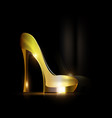 reflection of golden shoe vector image