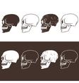 set aggressive skulls design template vector image