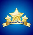 Three golden stars symbol vector image vector image