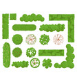 top view trees and bushes forest tree green park vector image vector image