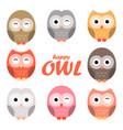 colorful owl cartoon set vector image