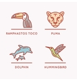 Animals Of South America vector image