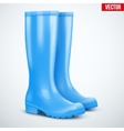 Pair of blue rain boots vector image