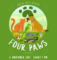 pet shop poster vector image