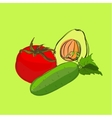 set of sketch vegetables vector image vector image