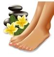 SPA concept with realistic female feet frangipani vector image