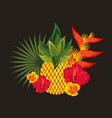 tropical flowers black background vector image vector image