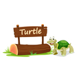 Turtle Zoo Sign vector image vector image