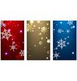Winter backgrounds set vector image vector image