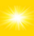 yellow rays sun summer texture background vector image vector image