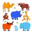cute exotic animals - set flat design style vector image