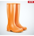 Pair of orange rain boots vector image vector image