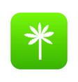 palm tree icon digital green vector image vector image