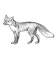red fox wild animal symbol north and the vector image