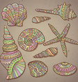 set of decorative seashells vector image vector image