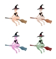 Set of multi-colored witch on a white background vector image vector image